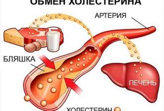 Обмен холестерина