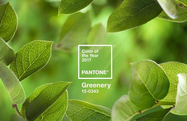 Главный цвет pantone green 2017