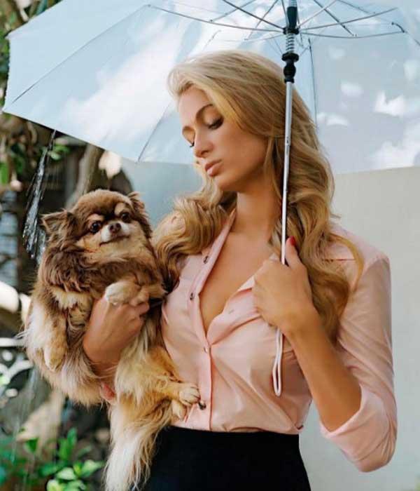 Paris-Hilton фото инстаграм, стиль
