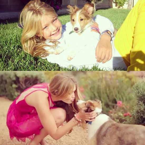 Джиджи с собакой 9 лет