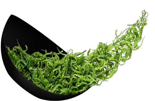 Пять полезных продуктов, которые вредят фигуре - морские водоросли
