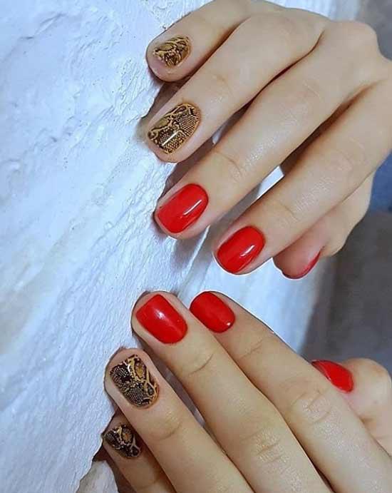 Красные ногти и коричневая змея