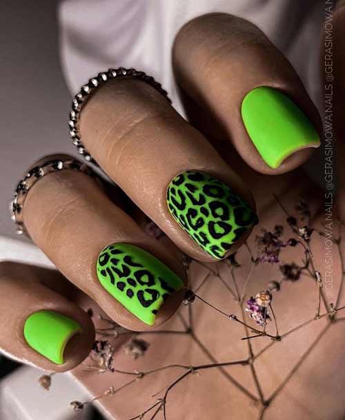 Зеленый маникюр квадрат леопард